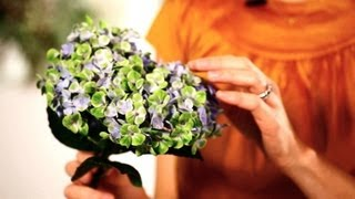 How to Make Hydrangeas Last Longer | Wedding Flowers(You already love Spotify, but do you know how to get the most out of it? Click here to learn all the Spotify Tips and Tricks you never knew existed., 2013-04-09T20:03:15.000Z)