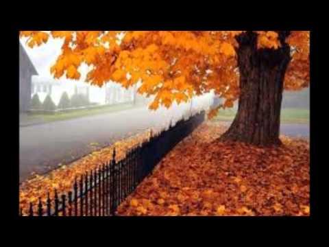 COME UN FIUME TU - E.Morricone - (Arrangement) videó letöltés