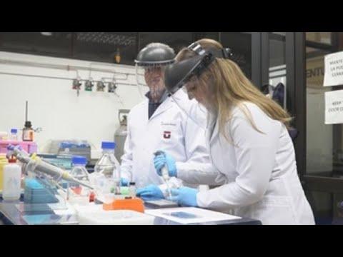 """Crean en Chile test de COVID-19 """"low cost"""" de libre uso para todo el mundo"""