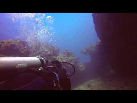 Scuba Diving In Kauai, Hawaii (Sheraton Caverns, Dolphins, Etc) [GoPro HD]
