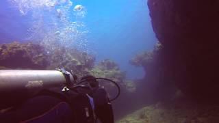 South Shore Scuba Diving