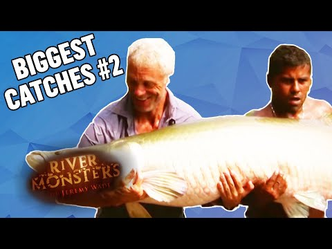 The BIGGEST CATCHES! (Part 2) | COMPILATION | River Monsters