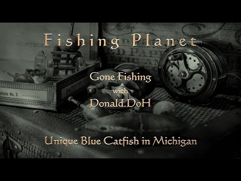 Fishing Planet - Trophy Blue Catfish - Michigan from YouTube · High Definition · Duration:  1 minutes 50 seconds  · 179 views · uploaded on 6/25/2016 · uploaded by DimMaattooss