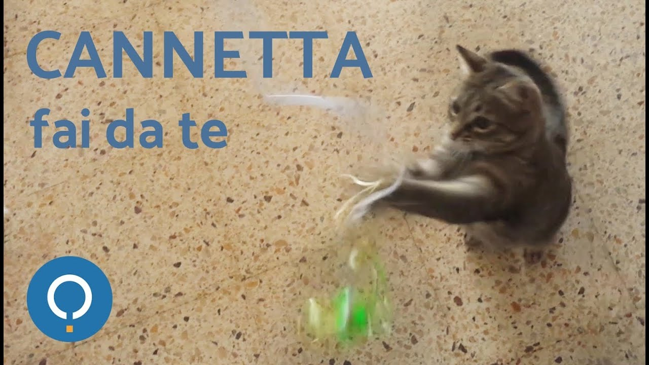 Cannetta per gatto fai da te youtube for Fermaporta fai da te