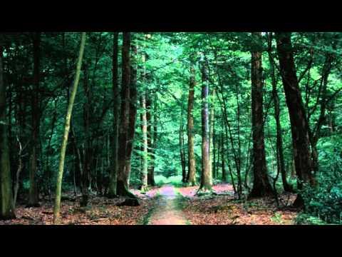 ❰Chillstep❱ Sappheiros - Memories (Remake)