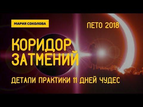 Детали практики 11 дней чудес в ОСОБЫЙ ПЕРИОД - Мария Соколова