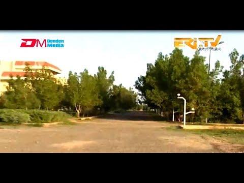 ERi-TV, Eritrea - ካብ ዞባታት፡ Eritrean Navy Forces Turn Desert Terrain To Crop Producing Green Land