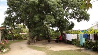 Sunday Life in TONGA