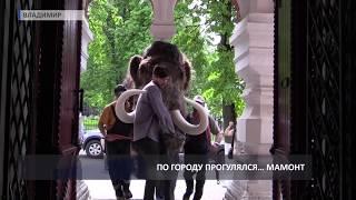 2018 05 16 Шествие мамонта к Историческому музею