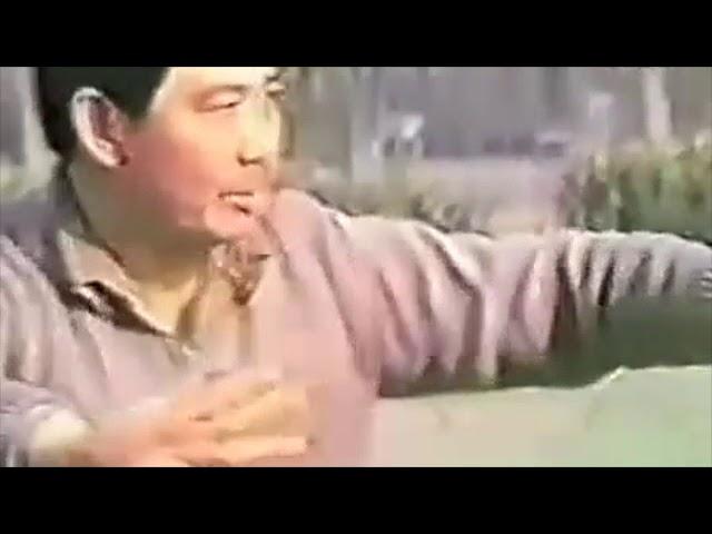 Yang Wen Jing- Tai Chi style Chen Xinjia Yilu [陈氏太极拳新架 Taijiquan style Chen]