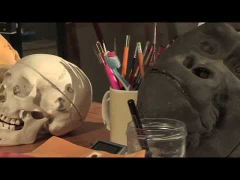 John Gurche - Skulls of different species - Web Extra - Artist Cafe