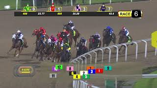 Vidéo de la course PMU MAIDEN- 1200 M.