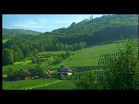 Wines of Germany, Growing Regions: Baden