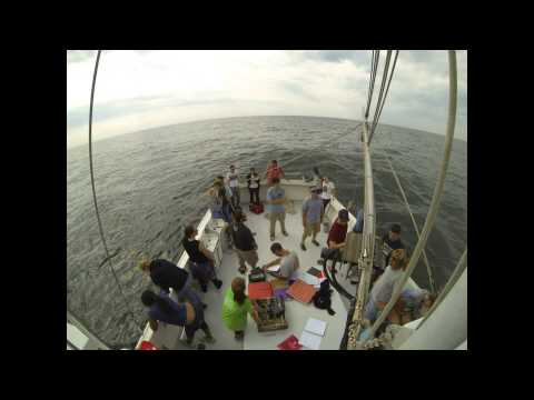 Intro to Physical Oceanography Lab - Time Lapse - 05 Sep 2013 - Stony Brook University
