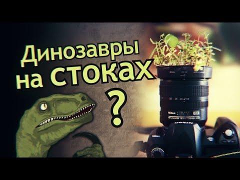 Ошибки новичков на Фотобанках. Выделяйся или умри. Динозавры на стоках.