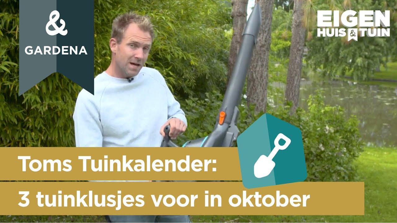 Oktober: 3 klusjes die je deze maand in de tuin kunt doen   Toms Tuinkalender   Eigen Huis & Tuin