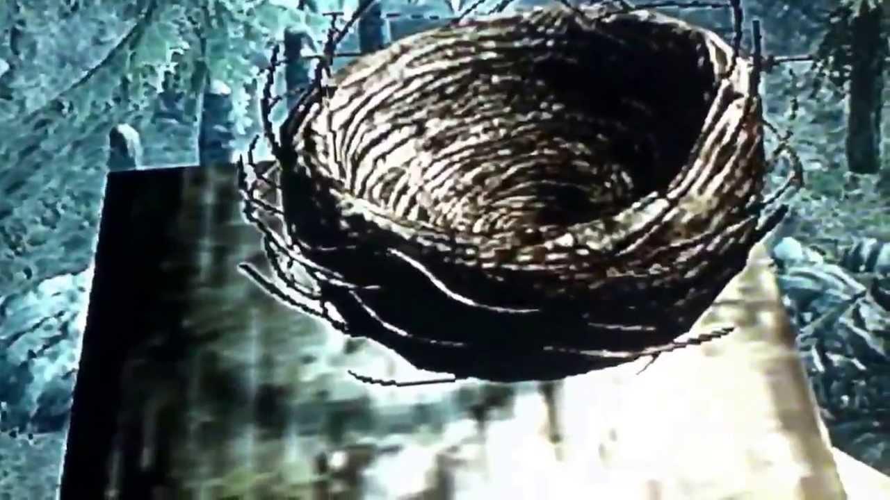 Skyrim Haerthfire Hawk Easter Egg Youtube