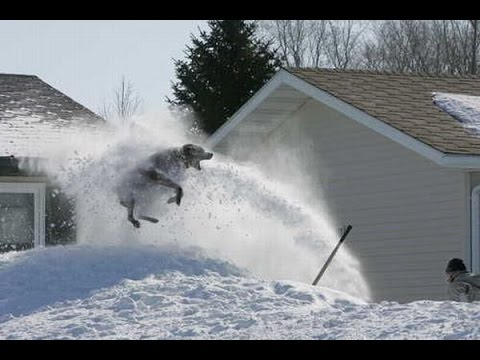 snow blower fail funny must watch youtube