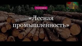 """География 9 класс, Домогацких, параграф 26, тема урока """"Лесная промышленность"""""""