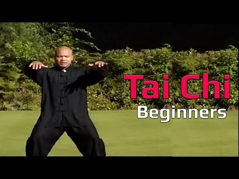 Tai chi chuan for beginners - Taiji Canon Fist Chen Style 1 Part 1