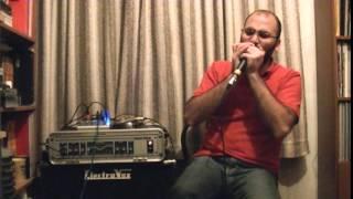 Enigma - Sadeness (Part II - Principles of Lust) -harmonica cover-
