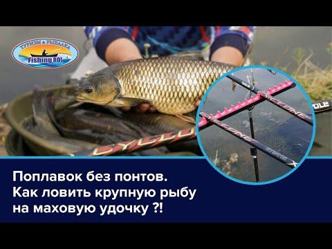 Поплавок без понтов. Как ловить крупную рыбу на маховую удочку?!