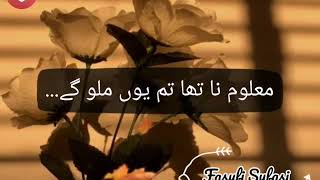 Mukhtasar Hayat Kar De Song | Laaj Drama OST | Lyrics Video | Whatsapp Status