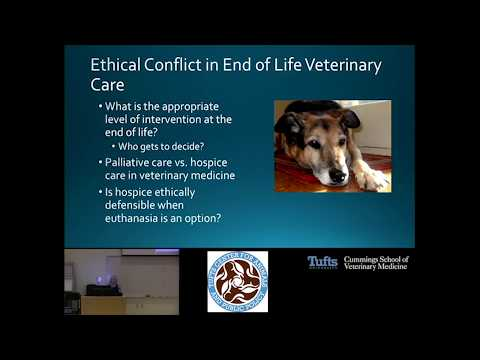 Animal Matters Seminar: Bioethics and Advanced Care of Companion Animals
