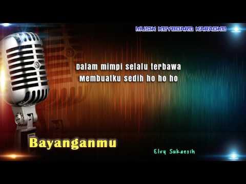 Elvy Sukaesih - Bayanganmu Karaoke Tanpa Vokal