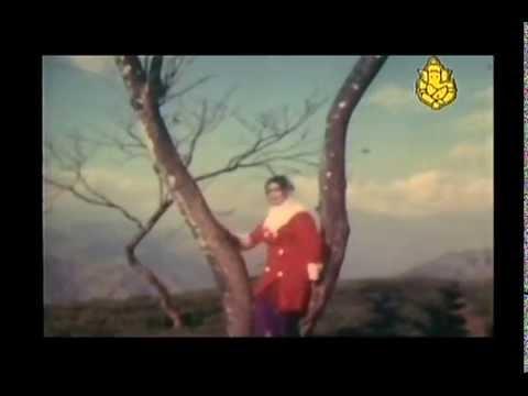 Nanna Putta Samsara  -  Bidugade