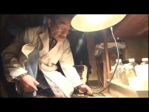 Amazing Japanese Repairmen #1 'Photographs' English subtitles