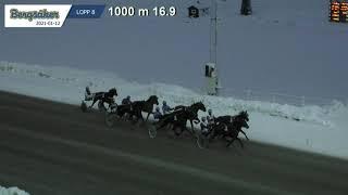 Vidéo de la course PMU PRIX P21