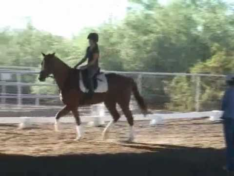 Shannon Peters Cliic - October 2012 (Arizona) McKenzie and Hello Handsome