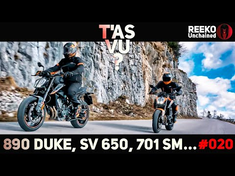 890 DUKE, HAYABUSA, SV 650, 701 SUPERMOTO...  ⚠️T'AS VU ? 🔴REEKO Unchained
