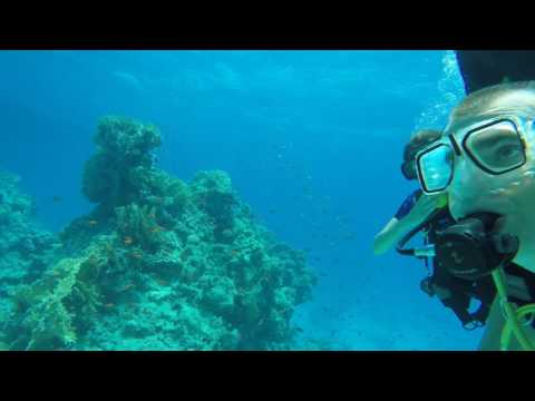 Diving in Ras Mohammed National Park, Red Sea, Sharm El Sheikh, Egypt, 2016