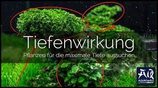 TIEFENWIRKUNG IM AQUASCAPE ERZEUGEN | Pflanzenauswahl für maximale Tiefe im Becken | AquaOwner