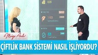 Çiftlik bank sistemi nasıl işliyordu? - Müge Anlı İle Tatlı Sert 19 Mart 2018