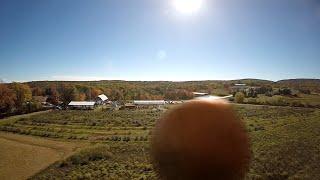Stupidest Drone Crash Ever (w/pumpkin) - I