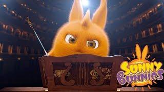 Cartoons for Children | SUNNY BUNNIES - THE CHOIR | Funny Cartoons For Children