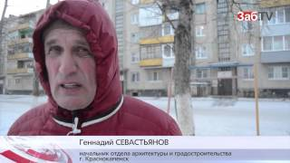 Жители Краснокаменска прикармливают бродячих собак к детской площадке