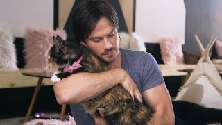 EXCLUSIVE: Watch Ian Somerhalder Play With Cute Kittens and Talk