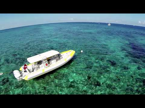 Take a Tour of Biscayne Bay, Florida