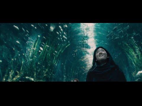 2014 Movie Trailer Mashup