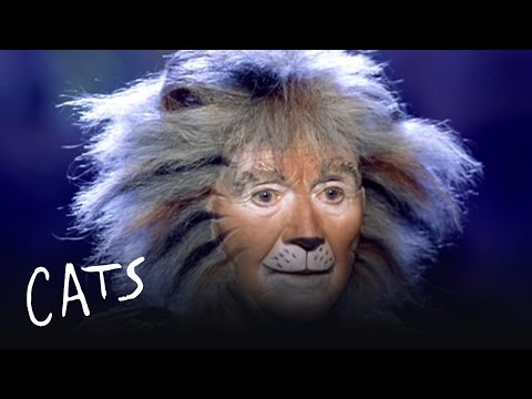 Gus the Theatre Cat Part 1 | Cats the Musical