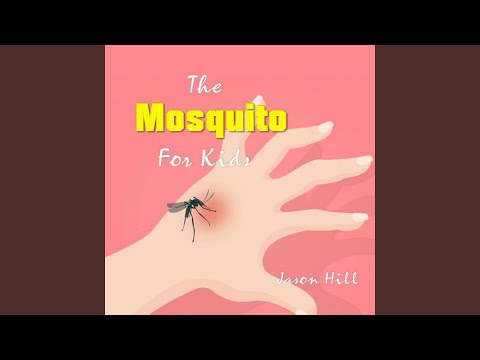 Chapter 6 - The Mosquito for Kids - 동영상