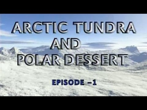 World Biomes | Arctic Tundra and Polar Desert | Episode 01 - YouTube