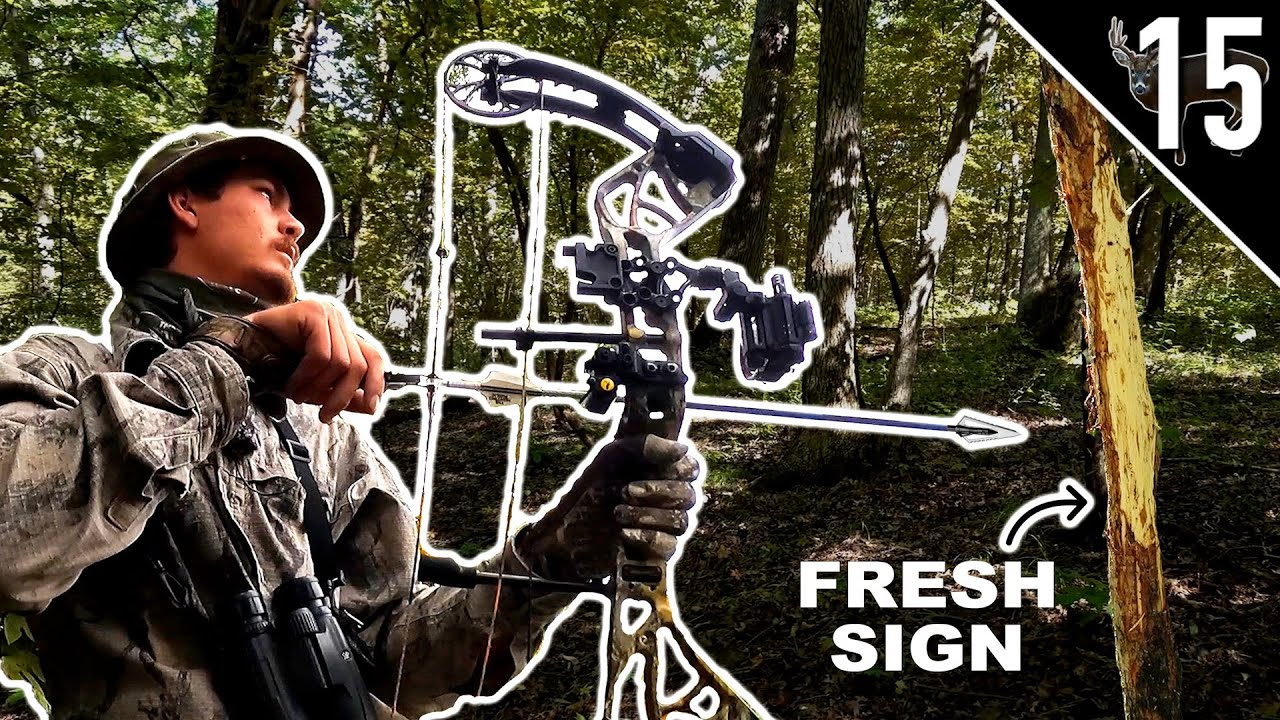 Download Hunting Bucks in October!! (Where should YOU start?)