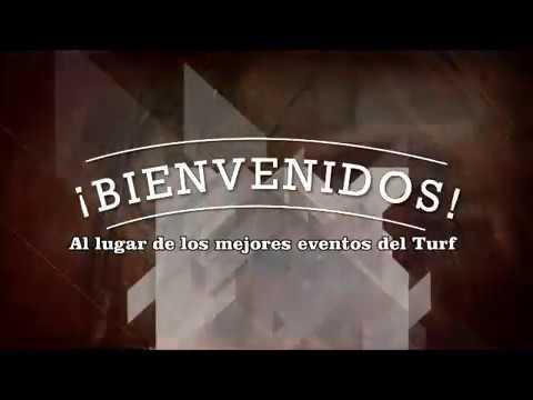 CUARTO OSCURO 15 07 2018 HIP EL PEDERNAL VIDEO DE CHEPES TURF - YouTube
