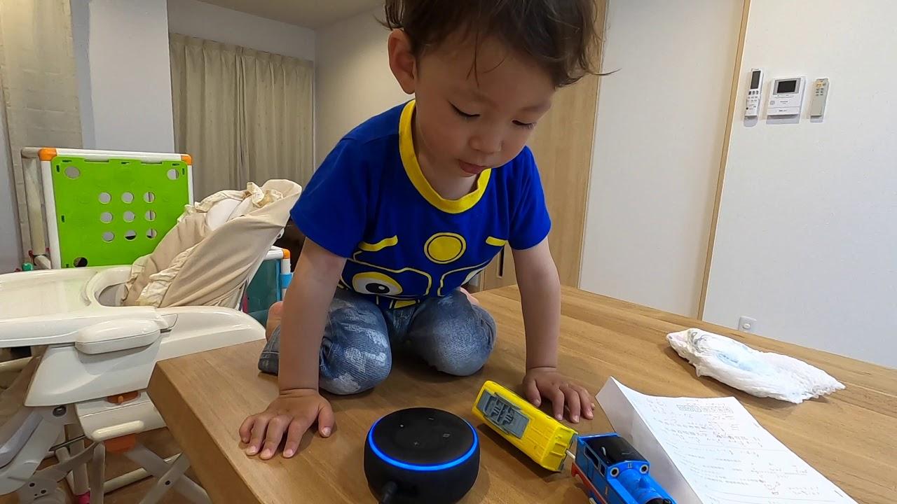 【2歳1ヶ月】続・アレクサと遊ぶ
