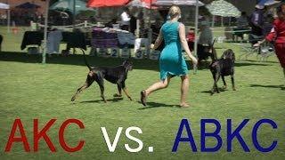 akc vs abkc